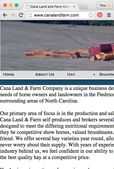 Cana Land and Farm Website Mobile View Before Re-Design